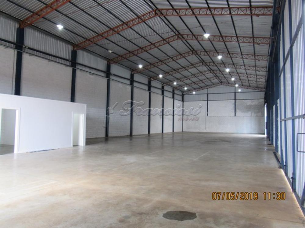 Alugar Comercial / Barracão em Itapetininga apenas R$ 5.000,00 - Foto 2