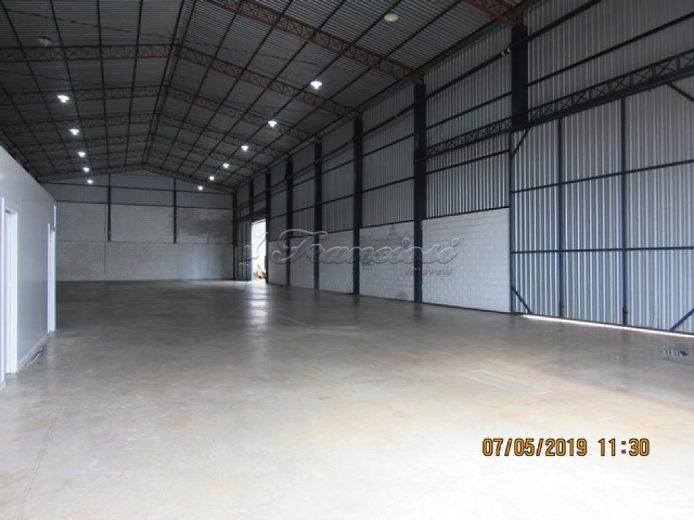 Alugar Comercial / Barracão em Itapetininga apenas R$ 5.000,00 - Foto 4