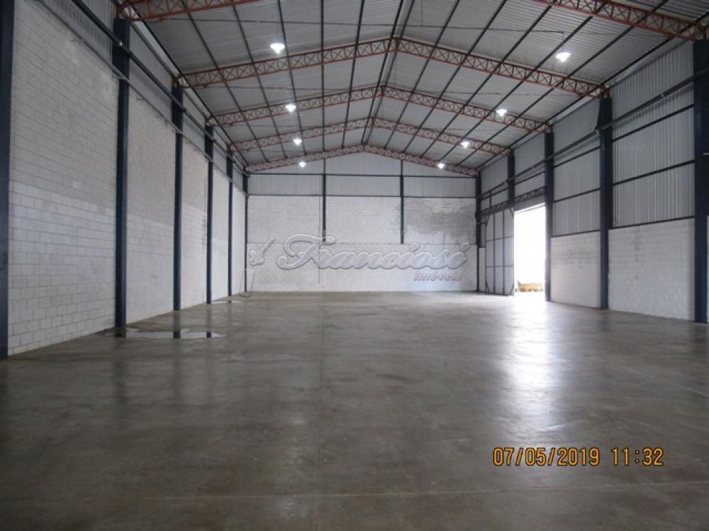 Alugar Comercial / Barracão em Itapetininga apenas R$ 5.000,00 - Foto 14