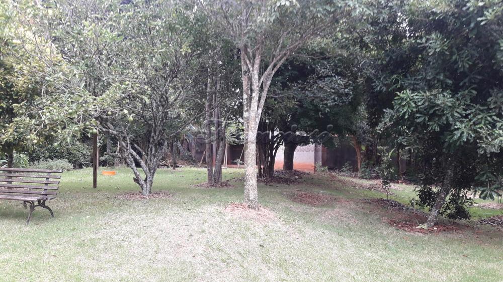 Comprar Casa / Padrão em Itapetininga apenas R$ 800.000,00 - Foto 5