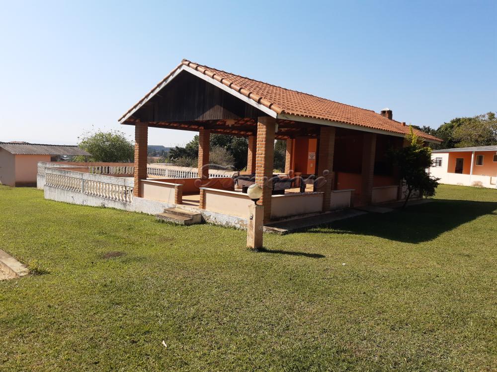 Comprar Rural / Sitio em Sarapuí apenas R$ 430.000,00 - Foto 5