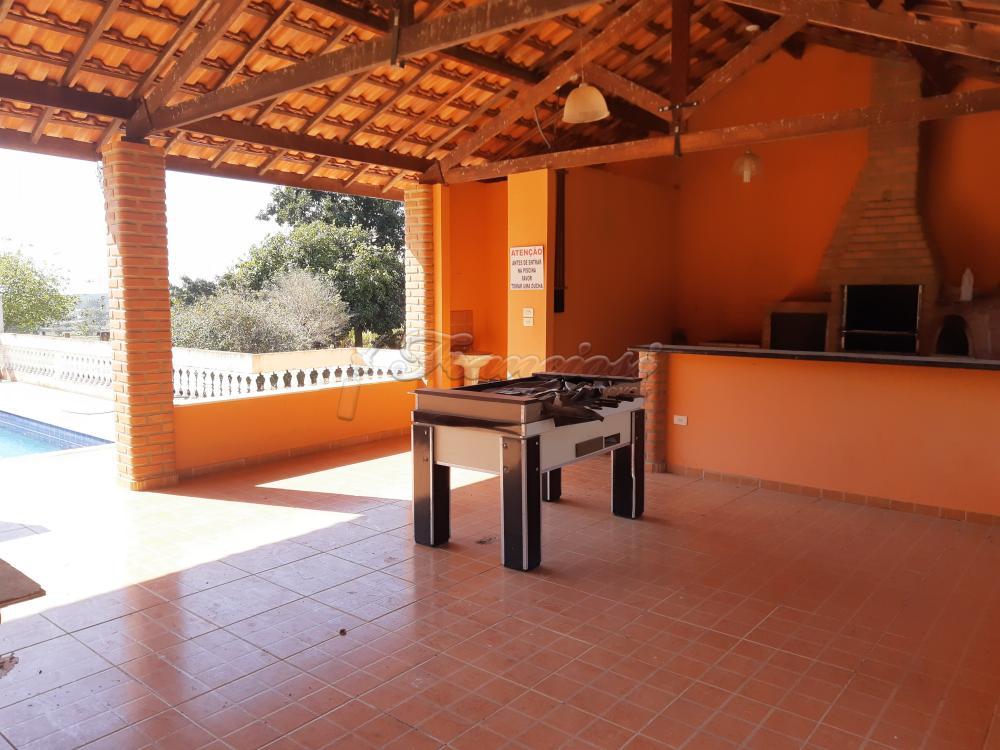 Comprar Rural / Sitio em Sarapuí apenas R$ 430.000,00 - Foto 6