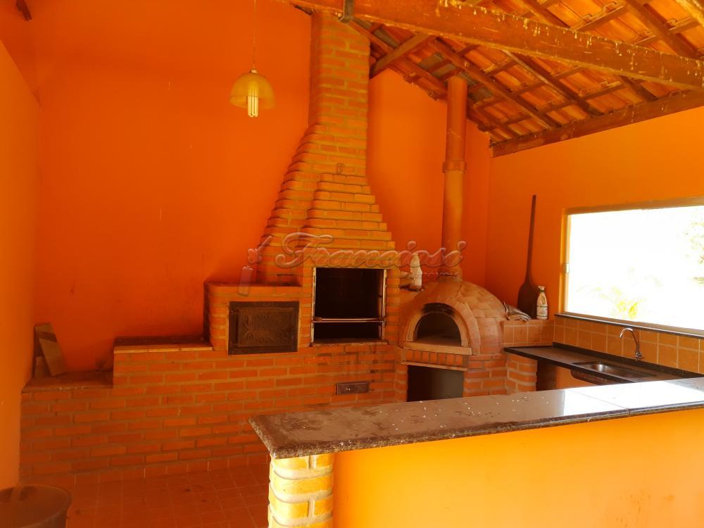 Comprar Rural / Sitio em Sarapuí apenas R$ 430.000,00 - Foto 7