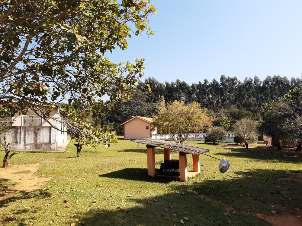 Comprar Rural / Sitio em Sarapuí apenas R$ 430.000,00 - Foto 15