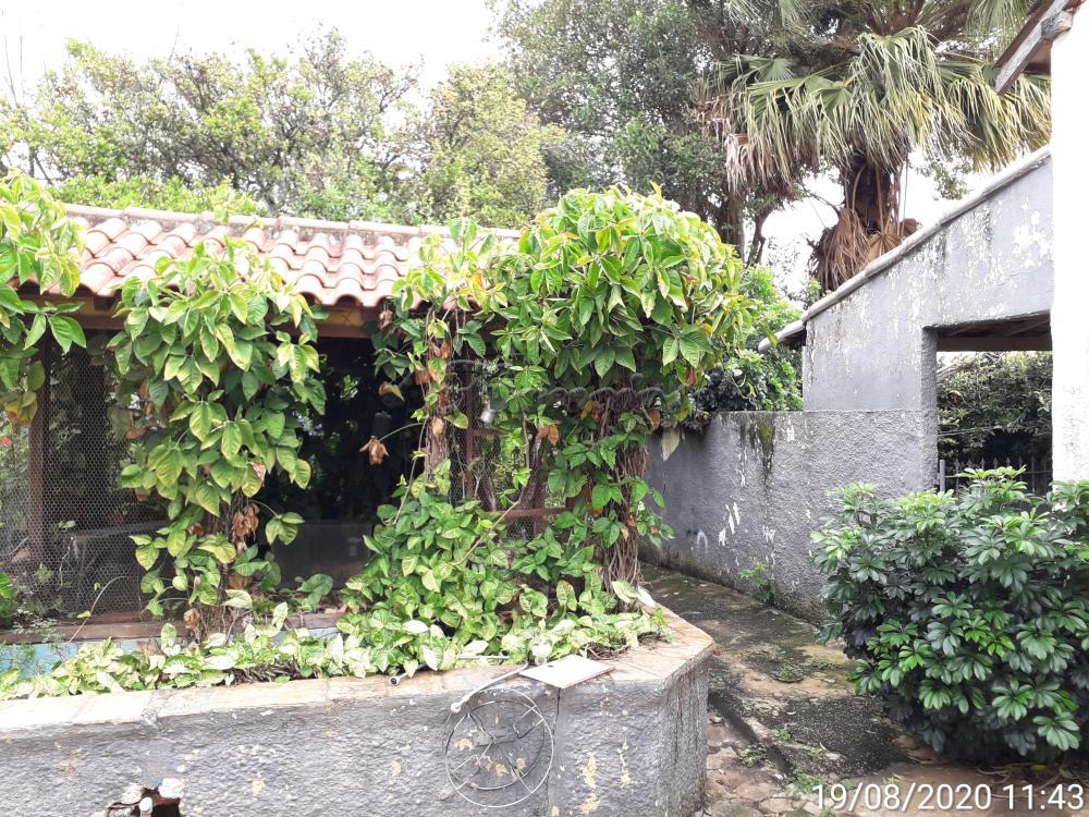 Alugar Casa / Comercial em Itapetininga apenas R$ 10.000,00 - Foto 23