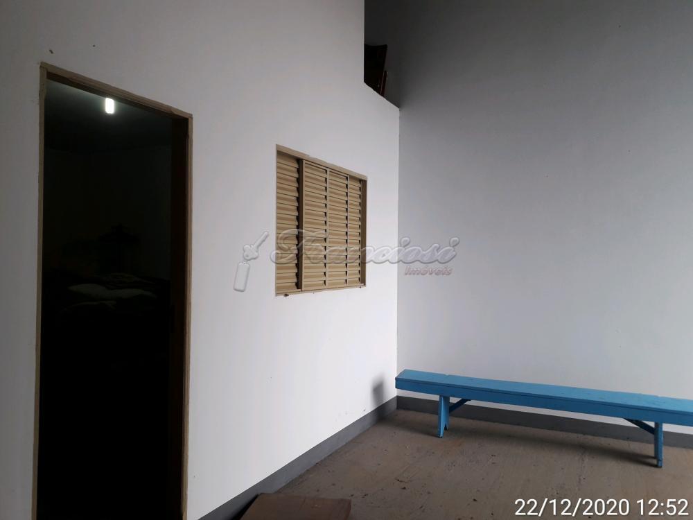 Alugar Comercial / Barracão em Itapetininga apenas R$ 4.500,00 - Foto 7