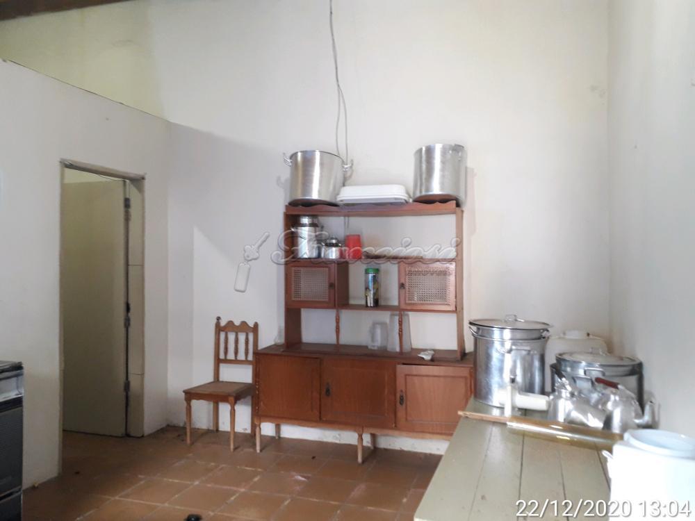 Alugar Comercial / Barracão em Itapetininga apenas R$ 4.500,00 - Foto 24