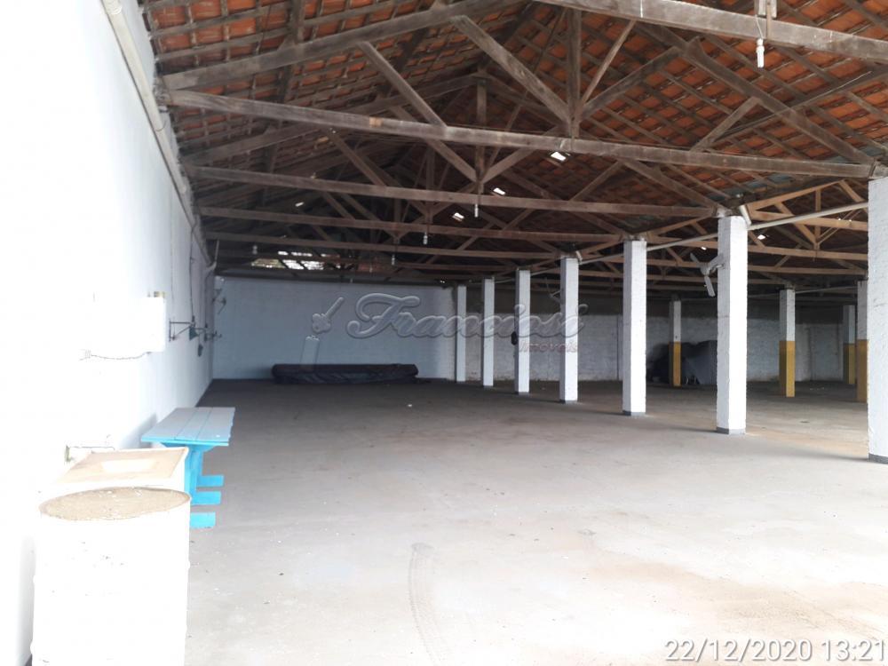 Alugar Comercial / Barracão em Itapetininga apenas R$ 4.500,00 - Foto 35