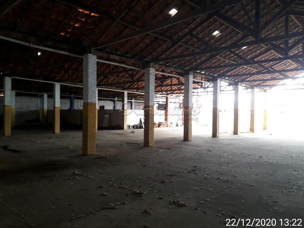 Alugar Comercial / Barracão em Itapetininga apenas R$ 4.500,00 - Foto 38