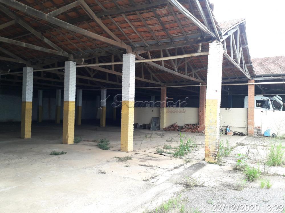 Alugar Comercial / Barracão em Itapetininga apenas R$ 4.500,00 - Foto 40