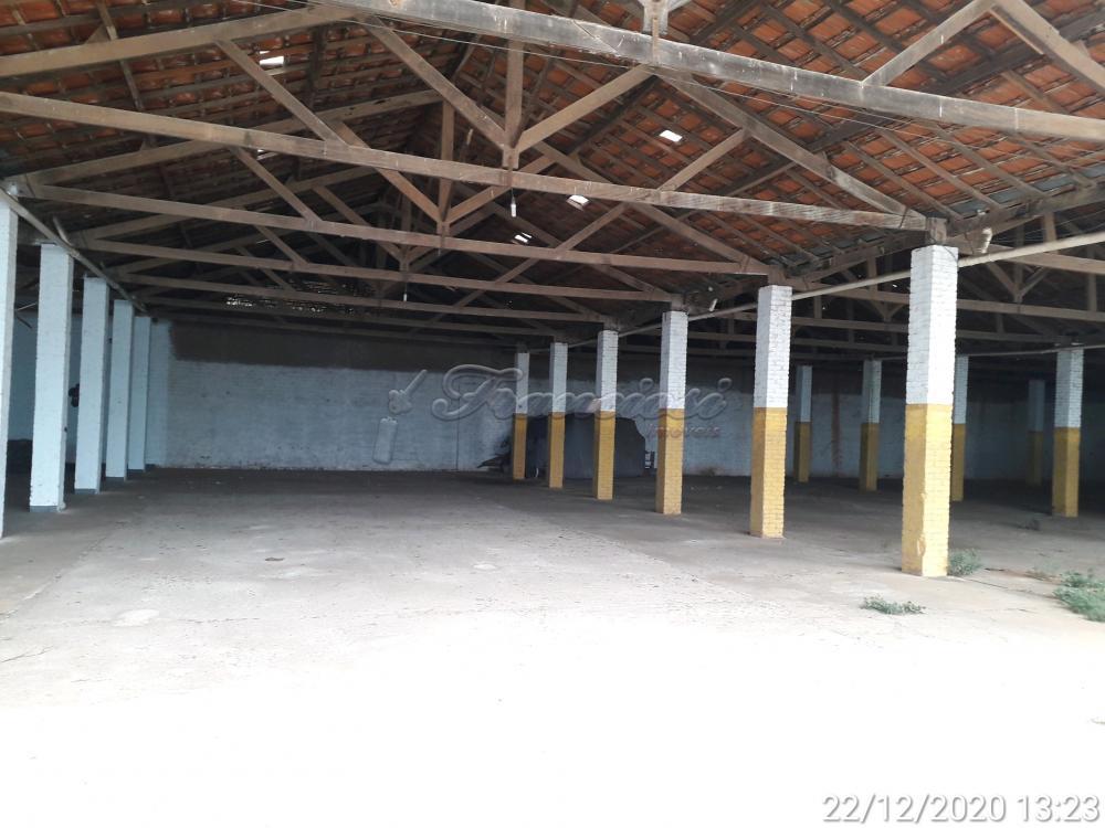 Alugar Comercial / Barracão em Itapetininga apenas R$ 4.500,00 - Foto 41