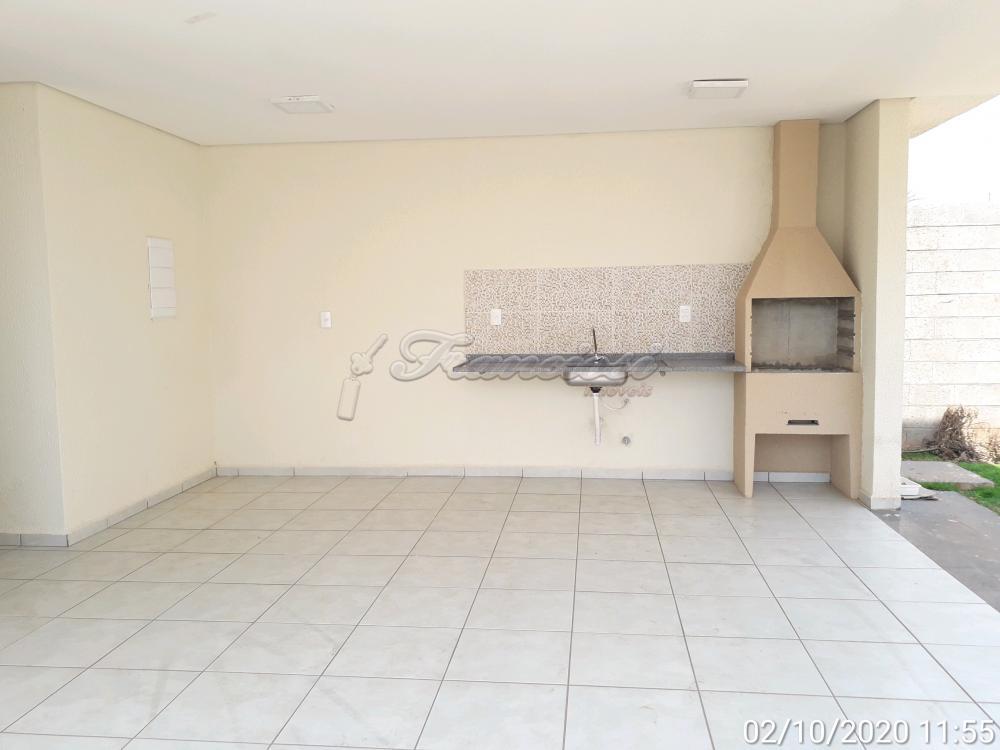 Alugar Apartamento / Padrão em Itapetininga apenas R$ 750,00 - Foto 12