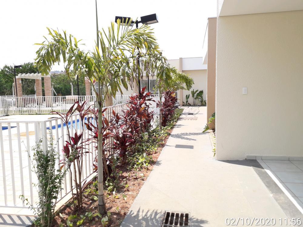 Alugar Apartamento / Padrão em Itapetininga apenas R$ 750,00 - Foto 14