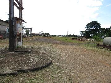 Comprar Comercial / Barracão em Itapetininga - Foto 13