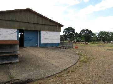 Comprar Comercial / Barracão em Itapetininga - Foto 17