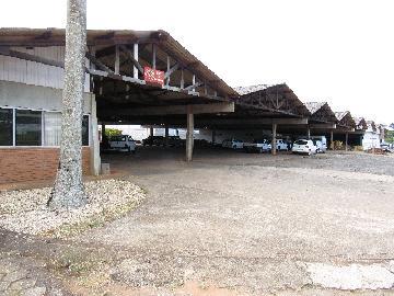 Comprar Comercial / Barracão em Itapetininga - Foto 33