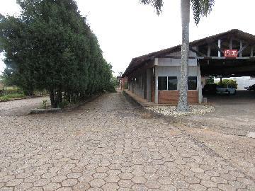 Comprar Comercial / Barracão em Itapetininga - Foto 34