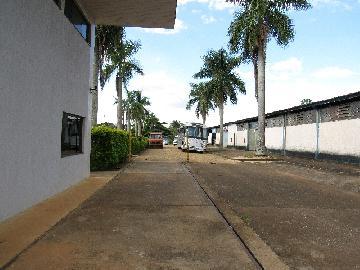 Comprar Comercial / Barracão em Itapetininga - Foto 37