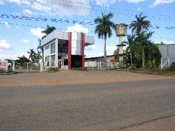 Comprar Comercial / Barracão em Itapetininga - Foto 1