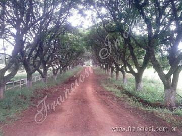 Itapetininga Mato Seco Rural Venda R$9.600.000,00 9 Dormitorios  Area do terreno 774400.00m2 Area construida 5000.00m2