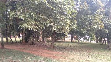 Alambari Bairro Cercadinho Rural Venda R$1.400.000,00 9 Dormitorios 4 Vagas Area do terreno 17000.00m2