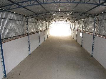 Alugar Comercial / Barracão em Itapetininga apenas R$ 3.500,00 - Foto 13