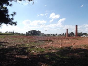 Itapetininga Chapada Grande Rural Venda R$2.500.000,00  Area do terreno 24000.00m2