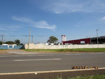 Itapetininga Jardim Bela Vista Area Locacao R$ 10.000,00  Area do terreno 35000.00m2