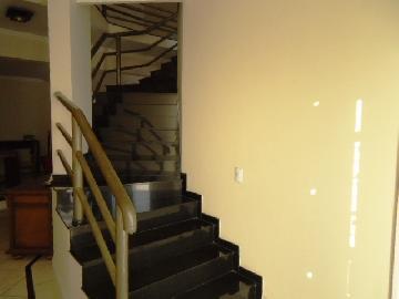 Alugar Casa / Condomínio em Itapetininga. apenas R$ 1.100.000,00