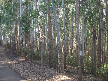 Itapetininga Bairro da Conceicao Rural Venda R$2.500.000,00 Area construida 0.01m2