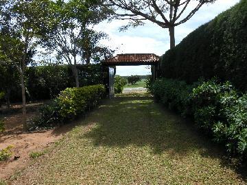 Alambari Rodovia 0 Venda R$420.000,00 3 Dormitorios  Area do terreno 4000.00m2