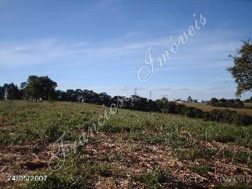 Itapetininga Chapada Grande Rural Venda R$3.500.000,00  Area do terreno 139150.00m2