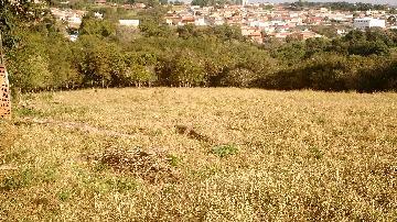 Itapetininga Jardim Maricota Casa Venda R$1.500.000,00  Area do terreno 24019.00m2