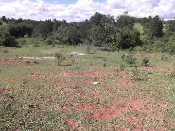 Itapetininga Mato Seco Terreno Venda R$6.000.000,00  Area do terreno 193600.00m2