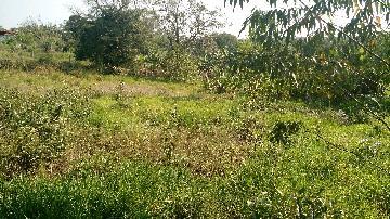 Alambari Bairro Cercadinho casa Venda R$500.000,00 3 Dormitorios  Area do terreno 10000.00m2 Area construida 120.00m2