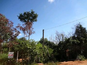 Itapetininga Vila Progresso Terreno Venda R$1.300.000,00  Area do terreno 13100.00m2
