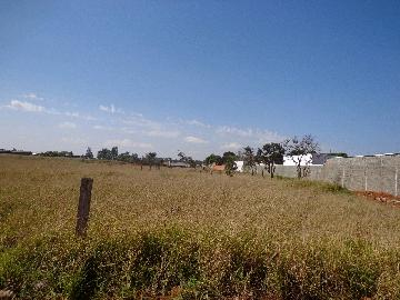Itapetininga Estancia Conceicao Terreno Venda R$1.600.000,00  Area do terreno 21684.00m2
