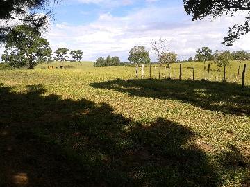 Itapetininga Bairro Canta Galo Rural Venda R$3.200.000,00 4 Dormitorios  Area do terreno 411400.00m2 Area construida 200.00m2