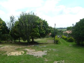 Alambari Ribeiraozinho Rural Venda R$540.000,00 3 Dormitorios  Area do terreno 12546.00m2