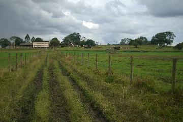Alambari Bairro Tucunduva Rural Venda R$5.000.000,00 3 Dormitorios  Area do terreno 460000.00m2