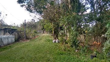 Alugar Rural / Rancho em Itapetininga apenas R$ 800,00 - Foto 6