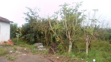 Alugar Rural / Rancho em Itapetininga apenas R$ 800,00 - Foto 11