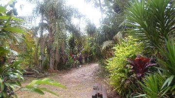 Alugar Rural / Rancho em Itapetininga apenas R$ 800,00 - Foto 12