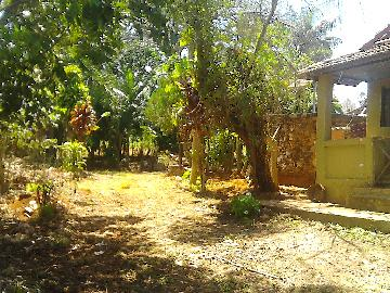 Alugar Rural / Rancho em Itapetininga apenas R$ 800,00 - Foto 16