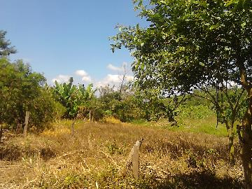 Alugar Rural / Rancho em Itapetininga apenas R$ 800,00 - Foto 17