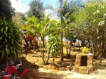 Alugar Rural / Rancho em Itapetininga apenas R$ 800,00 - Foto 18
