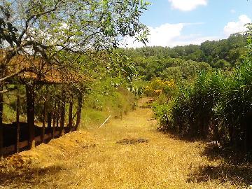 Alugar Rural / Rancho em Itapetininga apenas R$ 800,00 - Foto 21