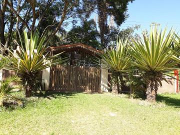 Alugar Rural / Rancho em Itapetininga apenas R$ 800,00 - Foto 1