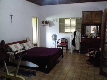 Comprar Rural / Chacara em Guareí apenas R$ 400.000,00 - Foto 5