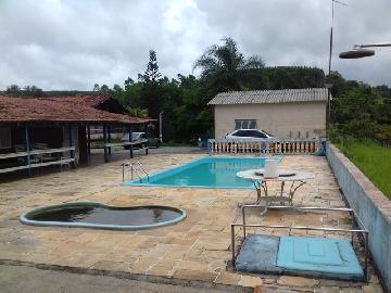 Comprar Rural / Chacara em Guareí apenas R$ 400.000,00 - Foto 13